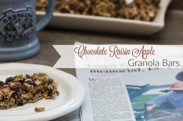 Easy 5 Ingredient Chocolate Raisin Apple Granola Bars Recipe