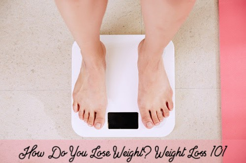 How Do You Lose Weight? Fat Loss 101